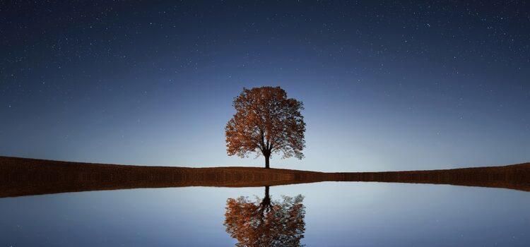 Wie schaffe ich es bei der Entspannung geistig abzuschalten?